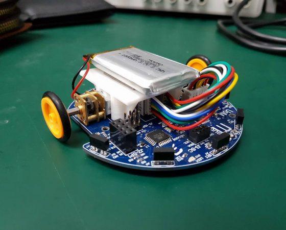 MONA – Autonomous Mobile Swam Robot